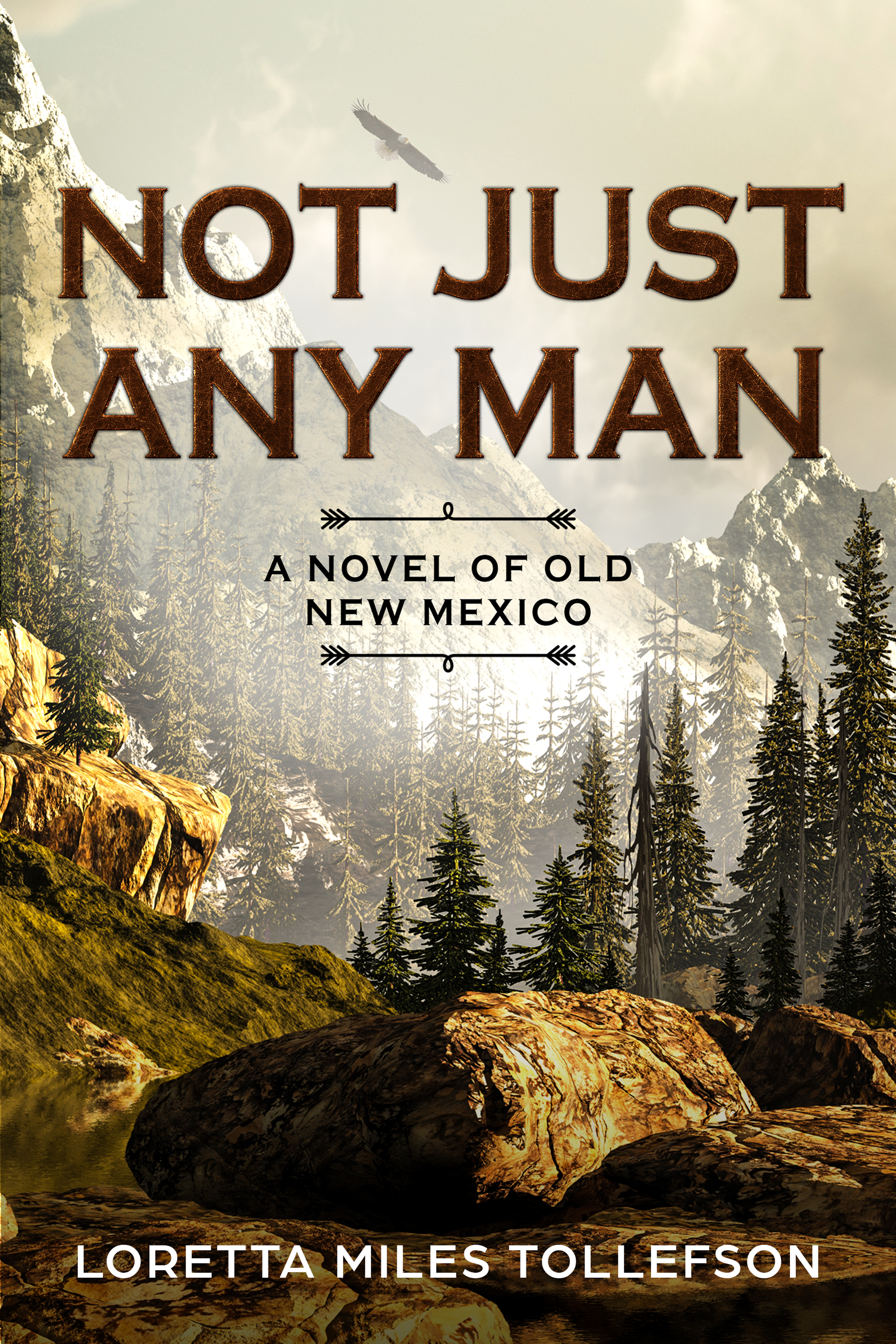 Not Just Any Man ebook cover reprise.final