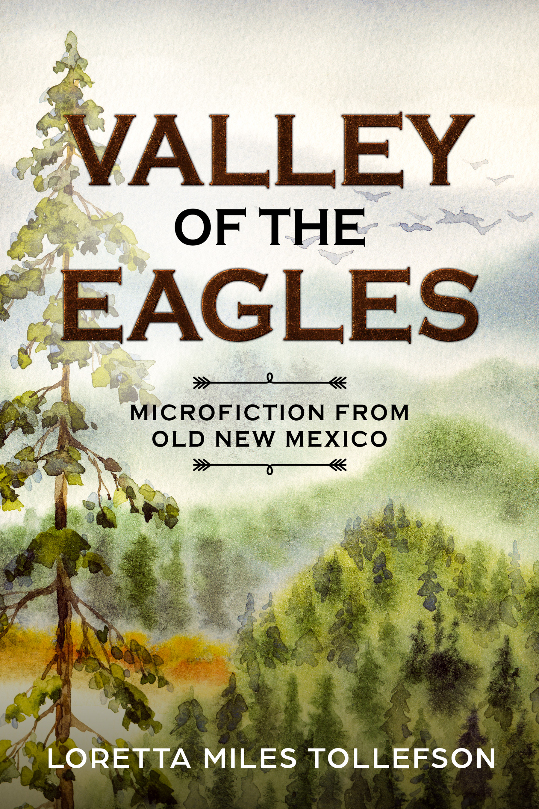 Valley ebook cover reprise.final