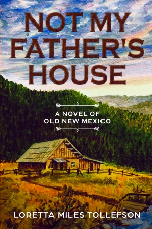 Not My Fathers House ebook